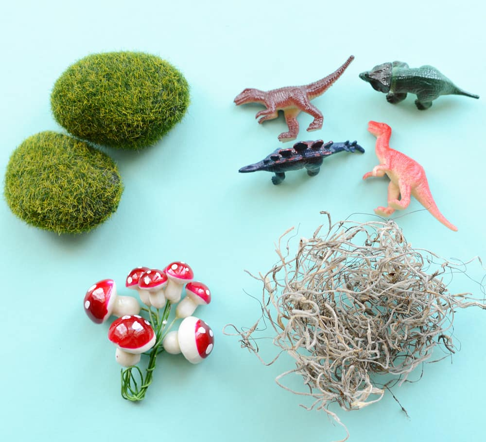 A collection of small objects, including plastic mushrooms, toy dinosaurs, moss and grassy rocks.