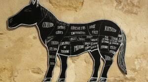 Недавно в прессе разгорелся целый скандал, вызванный обнаружением мяса конины в ряде продуктов, состав которых был...