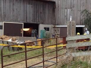 Barrels at farm