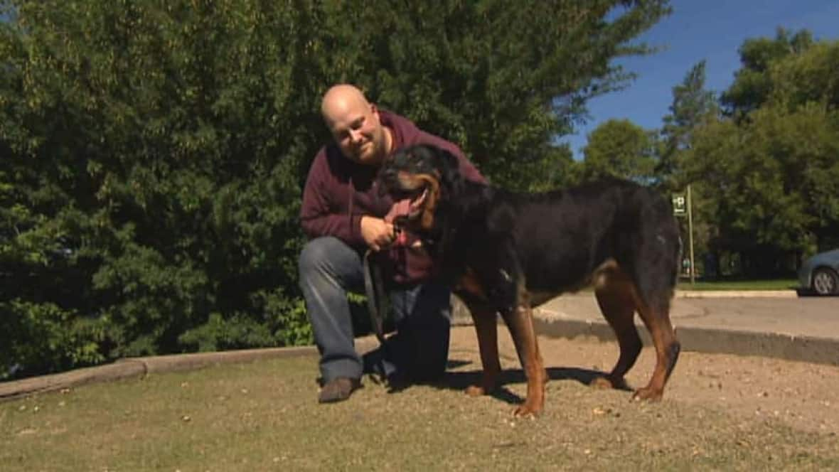 Regina Man Urges Caution When Shopping For A Dog Cbc News