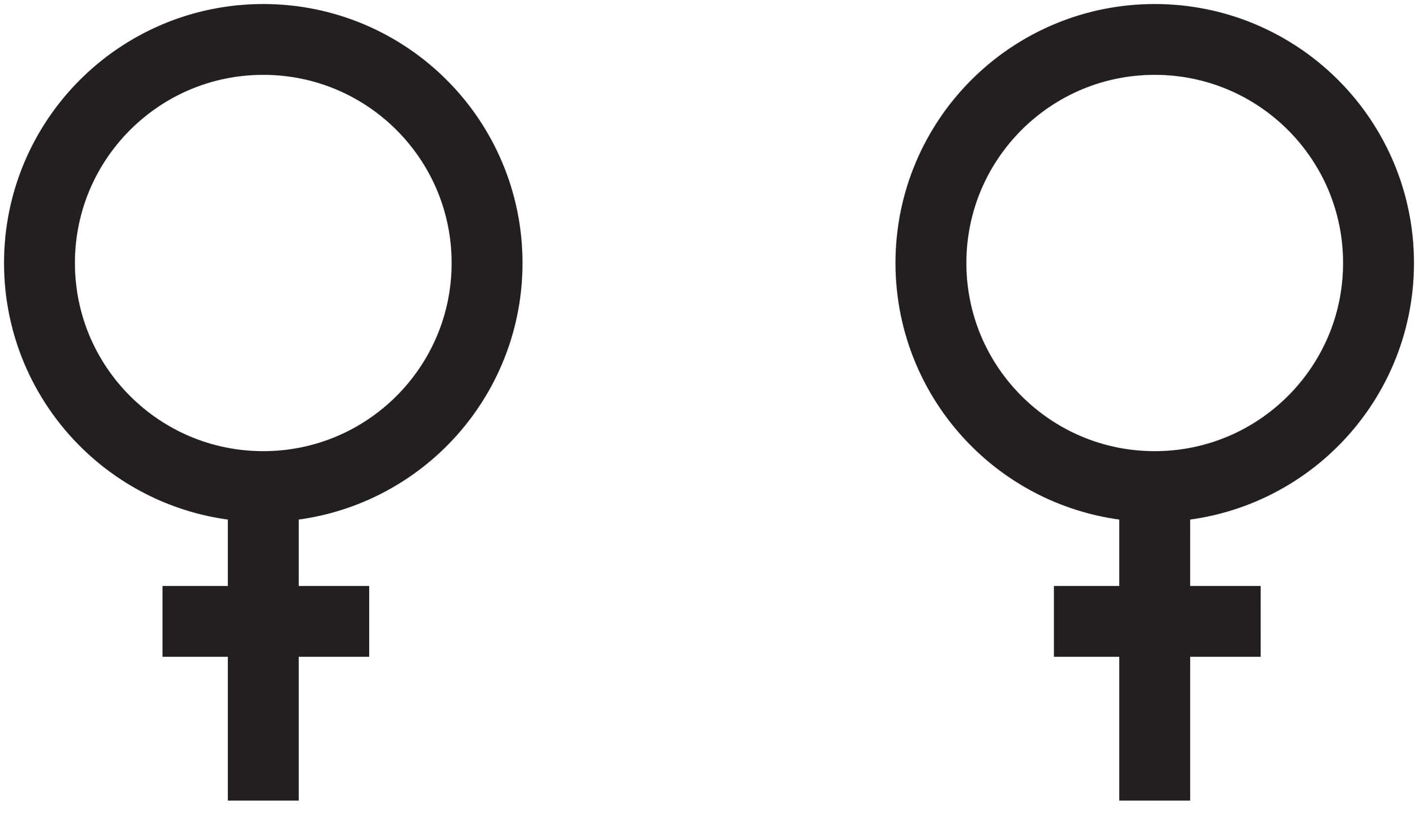 Feminist Symbol Stencil