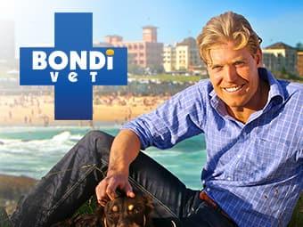 Bondi Vet (HD)