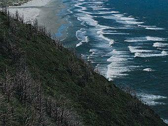 Land and Sea (HD)