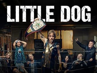 Little Dog (HD) (DV)