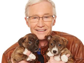 Paul O'Grady: For the Love of Dogs (HD)