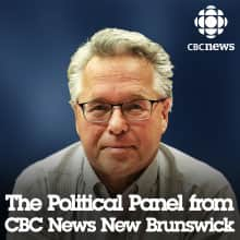 NB: The Political Panel