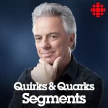 Quirks & Quarks - Segments
