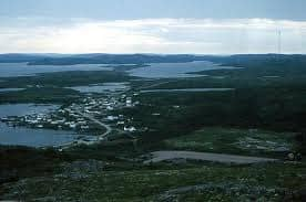 St Lewis labrador(wright-photo.com).jpg