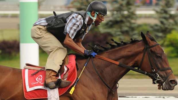 Jockey Patrick Husbands puts Woodbine Oaks favourite Dixie Strike through her paces at Woodbine Racetrack on Thursday. (Michael Burns/Canadian Press)