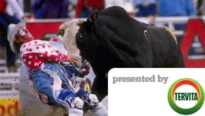 2014 Calgary Stampede Cbc Sports