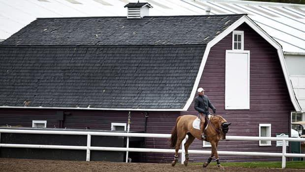 Eric Lamaze rides Derly Chin De Muze in an exercise arena at Spruce Meadows on Tuesday. (Jeff McIntosh/Canadian Press)