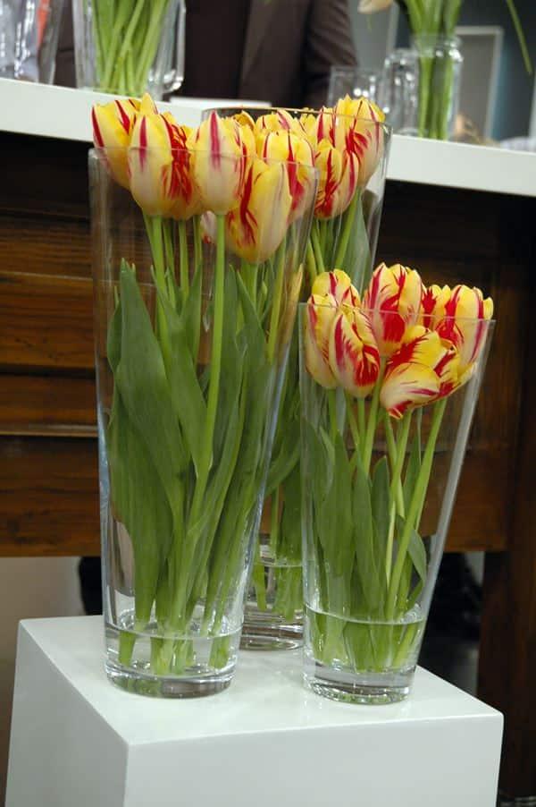 Tulip Flower Arrangements Steven And Chris