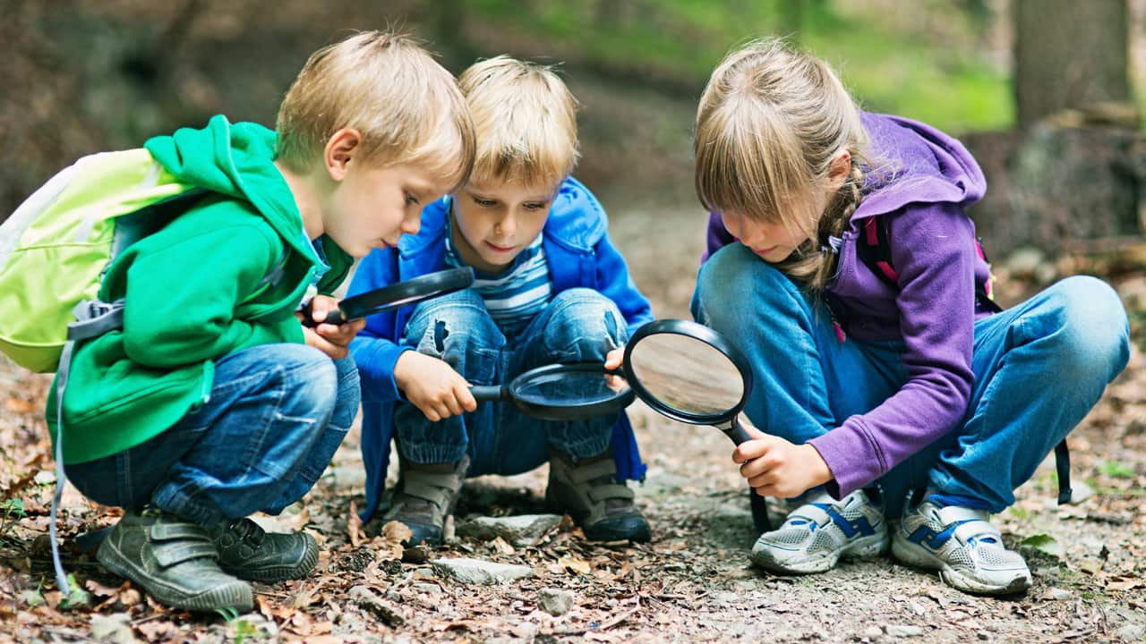 image of three children using a magnifying glass to look at leaves in the forest.