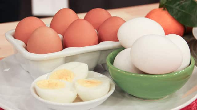 Fighting Eggs Intolerance