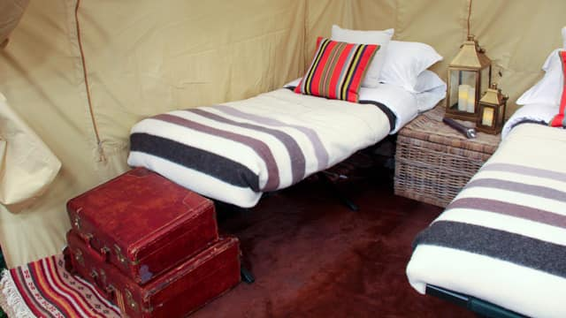 Cots for camping