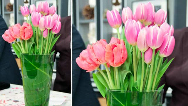 Tulips in decorative vase