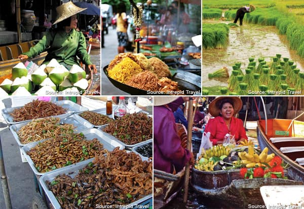 Photo collage of activities to do in Thailand