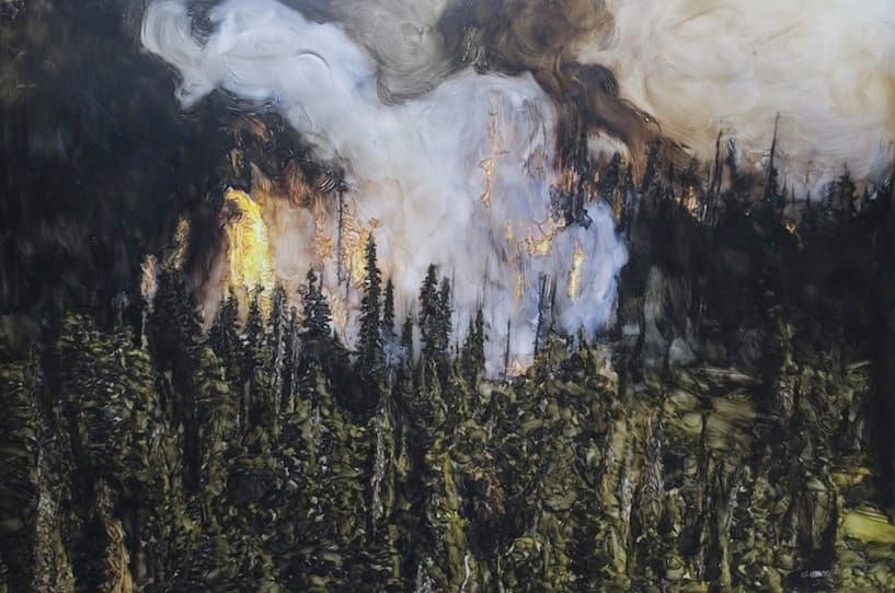 Forest Fire, Hobson, 2010
