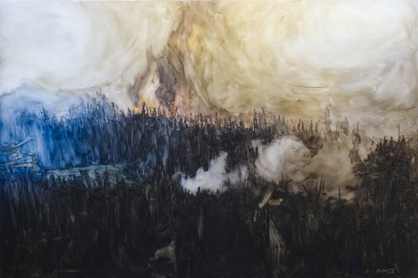 Forest Fire, Hobson II, 2010