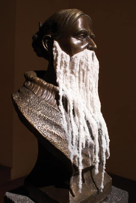 Barba de Sal, 2009