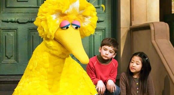 How-did-big-bird-end-up-in-the-us-presidential-campaign-hes-not-even-running-feature1.jpg