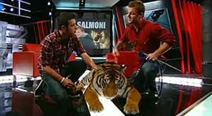 THE HOUR S6: Episode 155 - Gord Downie, Dave Salmoni & Jonas the Tiger