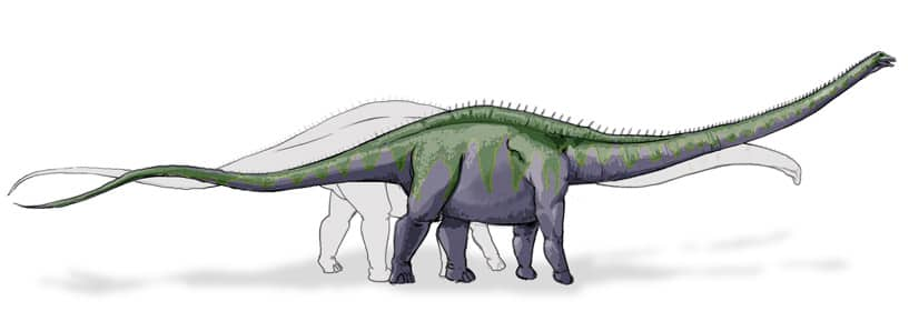 Supersaurus