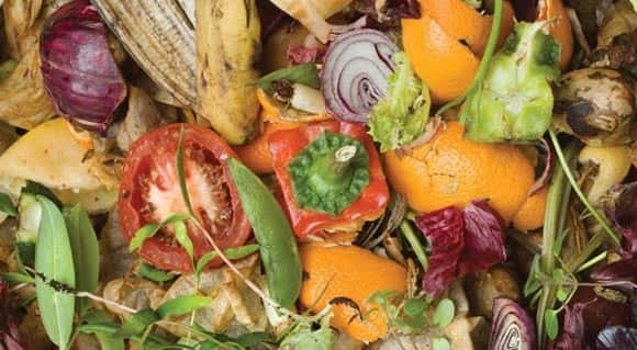 What-A-Waste-New-Study-Says-Cdns-Throw-Away-27-Billion-Worth-Of-Food-Every-Year-feature1.jpg