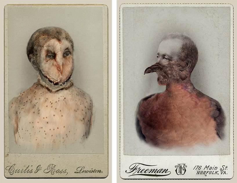 LOOK AT THIS: The Haunting Bird People People Of Sara Angelucci