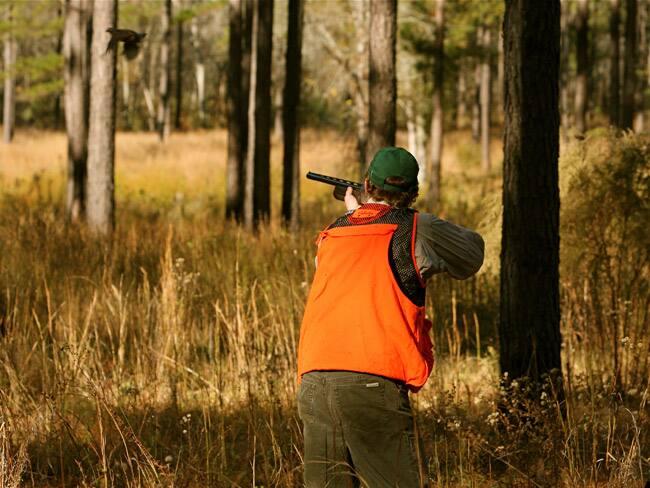 Hunting: 4.7 million