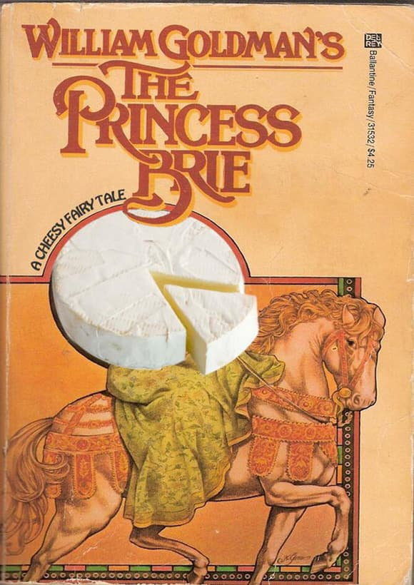 books-with-missing-letter-princess-brie.jpg