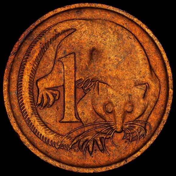 coin-pictures-muskrat.jpg