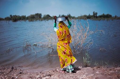 flood_1.jpg