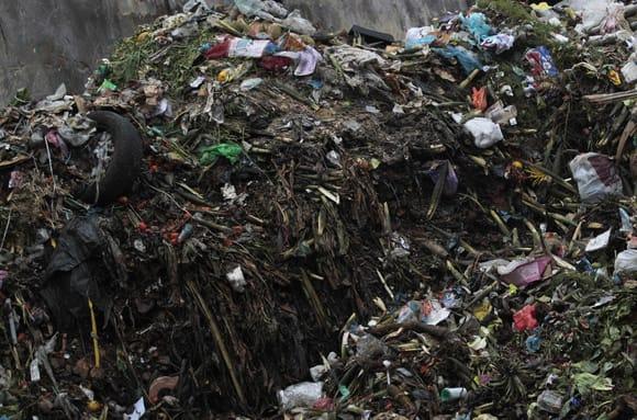 food-waste-50-dump.jpg