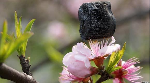 graphene-aerosol-flower.jpg