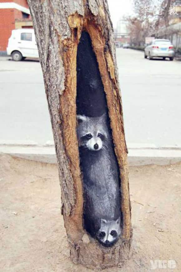 hollow-art-raccoons.jpg