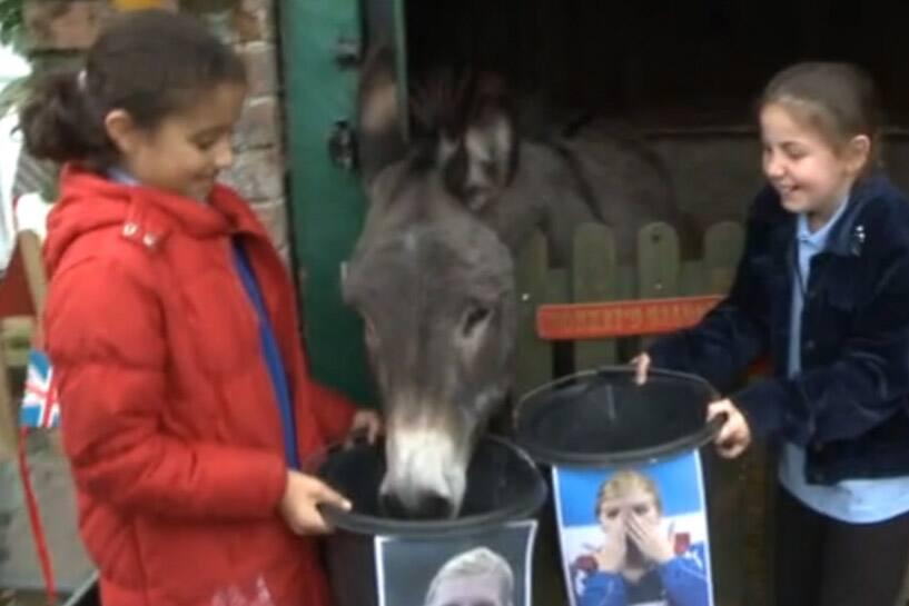 Larry the Donkey