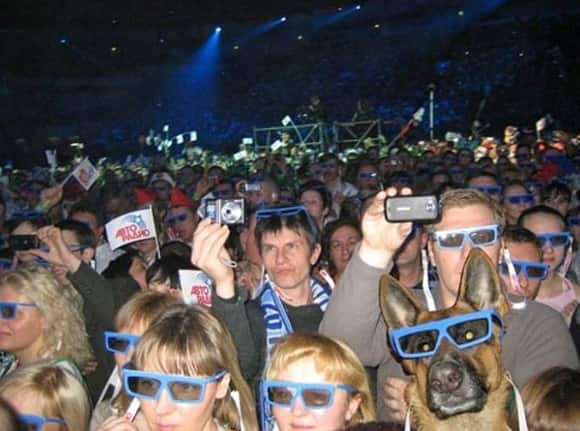 photobomb-concert-dog.jpg