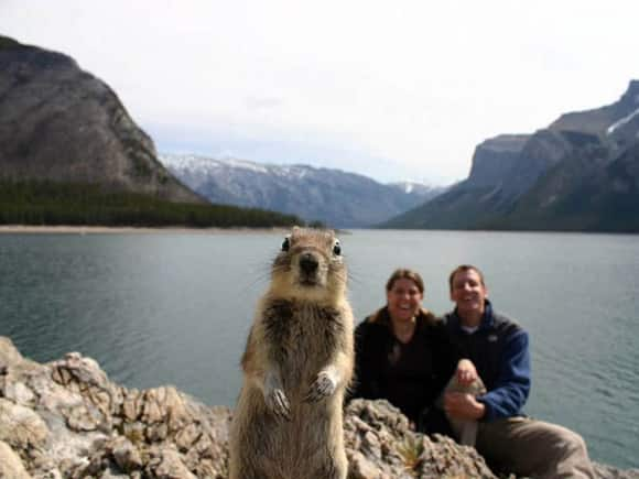 photobomb-squirrel.jpg