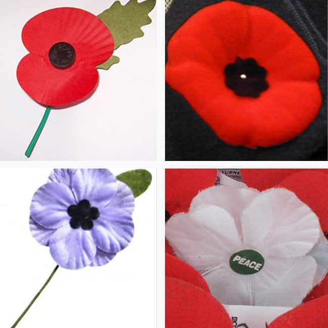 There's more than one kind of poppy