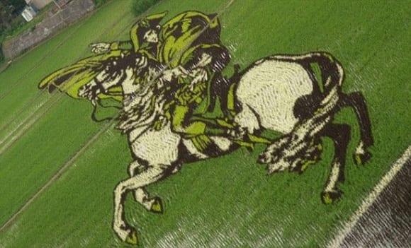 rice-paddy-napoleon.jpg