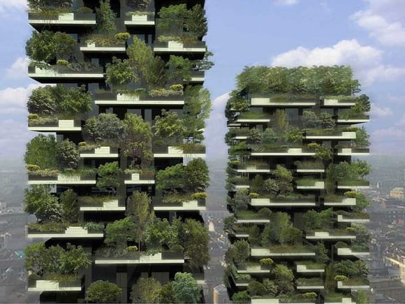 skyscraper-forests-feature.jpg