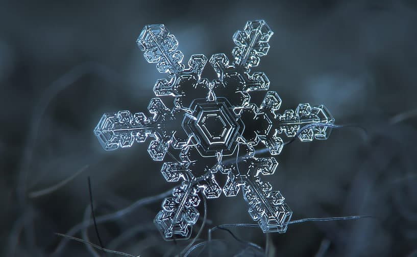You Haven't Really Seen Snowflakes Until You've Seen Them Up Close