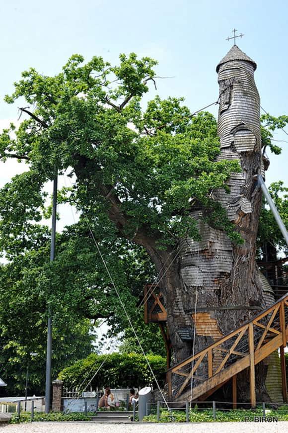 tree-church-1.jpg