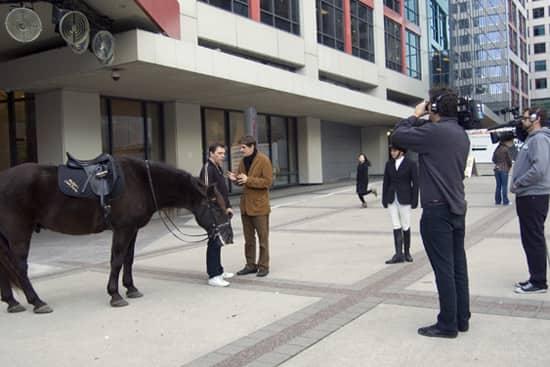 horse_nov_13_09.jpg
