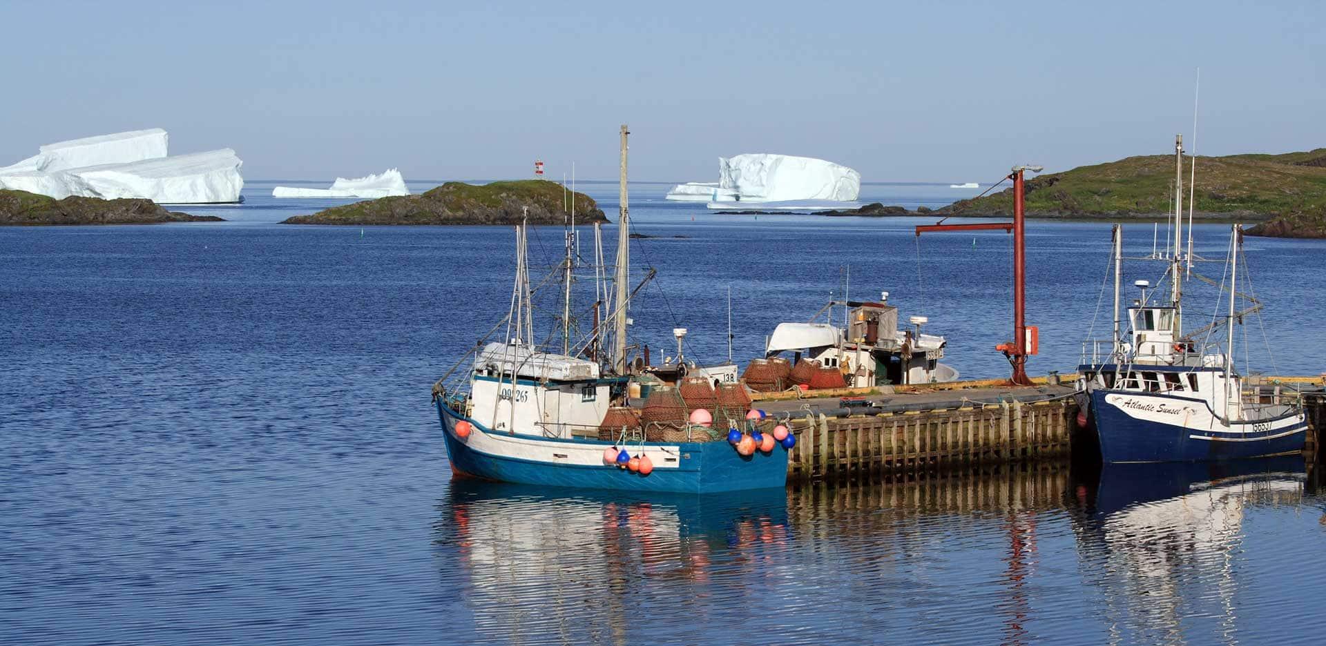 Icebergs off coast of Goose Cove, Newfoundland. Photo: istock, Photawa