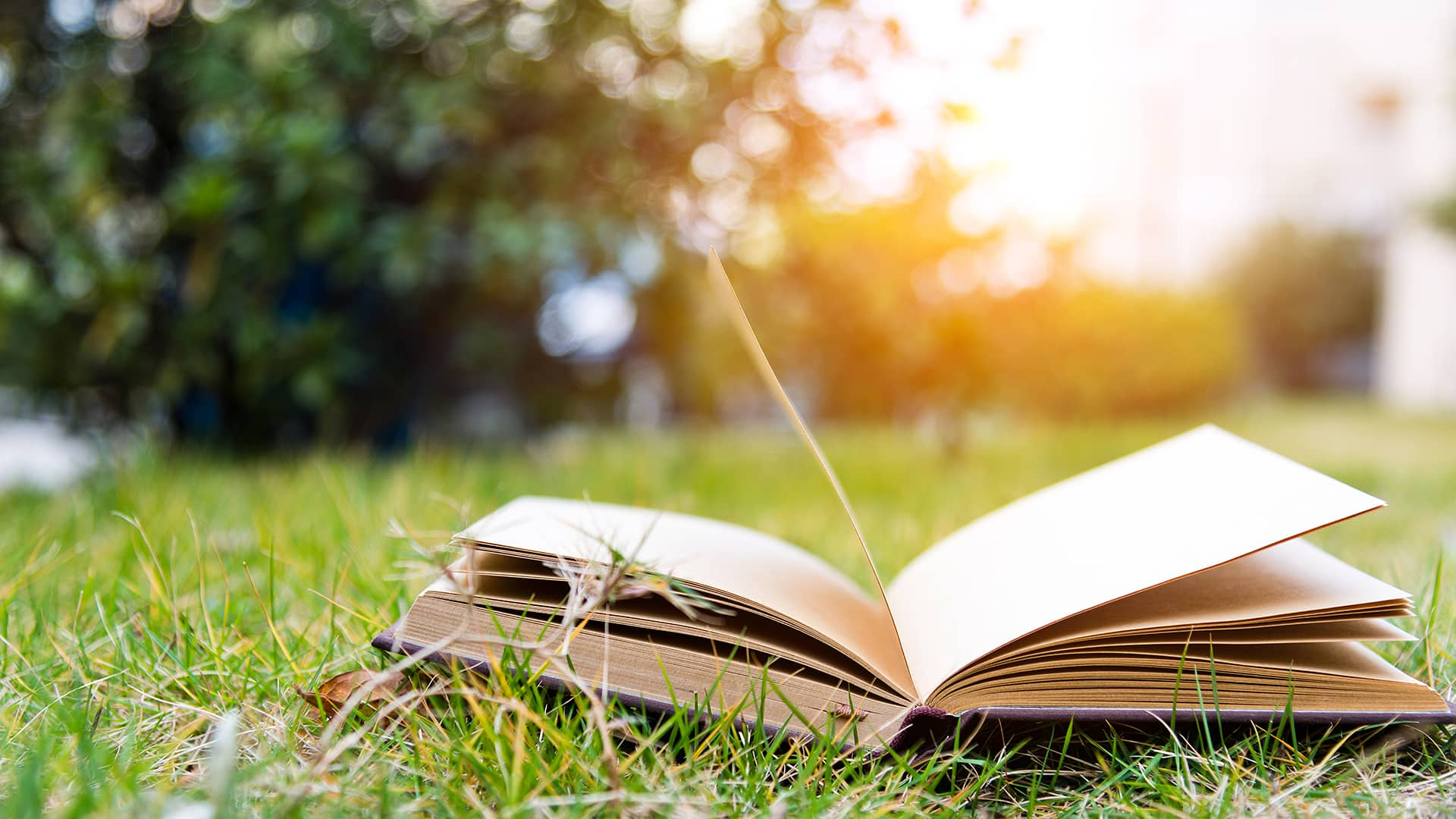 naturebooks