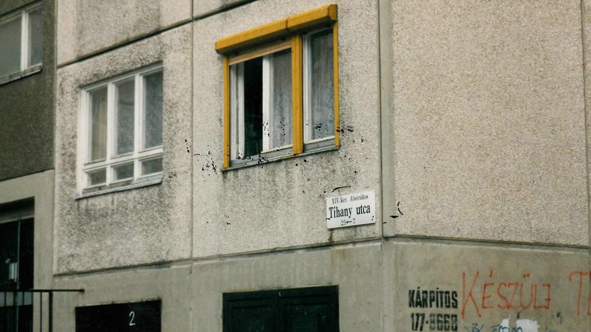 x-company-gelleny-koschwitz-safehouse